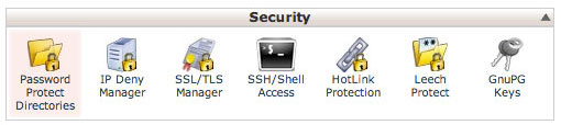 cpanel-security-section
